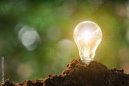 Photo  Light bulb glowing in soil as idea or energy concept