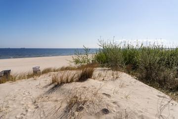 Grassy sand dunes on the Baltic Sea