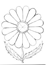 Outline Drawing Of A Flower Fo...