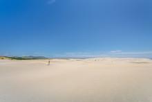 Farewell Spit, Golden Bay, New...