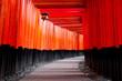 Leinwanddruck Bild - Red Torii of Fushimi Inari Shrine, Kyoto, Japan