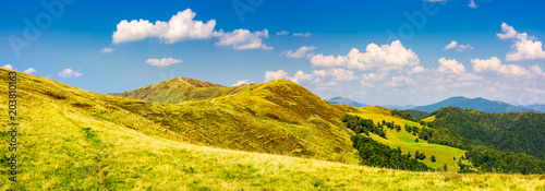Spoed Foto op Canvas Oranje panorama of Krasna mountain ridge. beautiful landscape with grassy slopes and forested hill under the blue summer sky with fluffy clouds. location Carpathian mountains, Ukraine