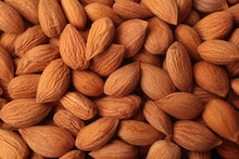 Apricot Seeds, For Backgrounds Or Textures