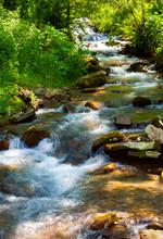 Small Water Stream On Sunny Da...