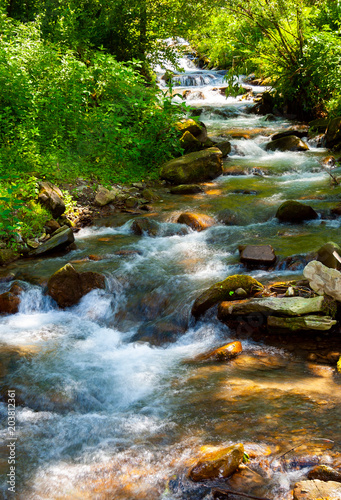 Staande foto Rivier small water stream on sunny day. lovely summer nature scenery