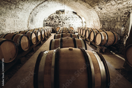 Fotografia  Wine in large barrels