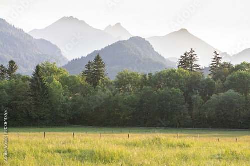 Foto op Plexiglas Khaki Typical alpine landscape