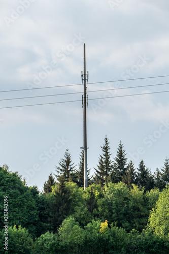 Fotografie, Obraz  Funkmast im Wald