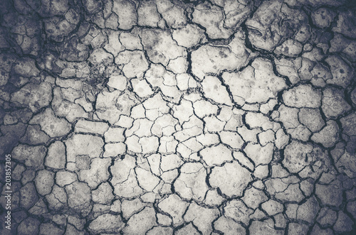 Fotografía  Dry cracked earth background, clay desert texture