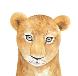 Watercolor portrait of young African Lioness character. Beautiful, looking at camera. Symbol of pride, strength, justice, energy, sun power. Hand drawn water color painting on white, isolated. - 203862358