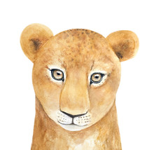 Watercolor Portrait Of Young African Lioness Character. Beautiful, Looking At Camera. Symbol Of Pride, Strength, Justice, Energy, Sun Power. Hand Drawn Water Color Painting On White, Isolated.