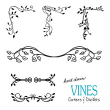 Ivy And Vine Design Elements W...