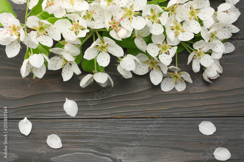 Staande foto Lelietje van dalen white cherry blossoms on dark wooden background. top view