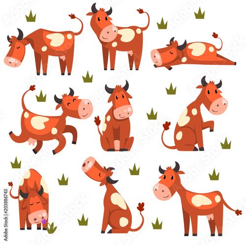 Fotografía Brown spotted cow set, farm animal character in various poses vector Illustratio
