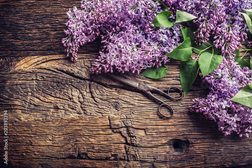 Staande foto Lilac Bouquet of purple lilac and antique scissors on old wooden table