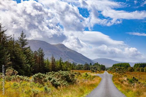 Fotografie, Obraz Scenic country road at Isle of Mull Inner Hebrides Scotland UK