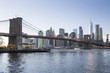 New York, Lower Manhattan skyline with Brooklyn Bridge