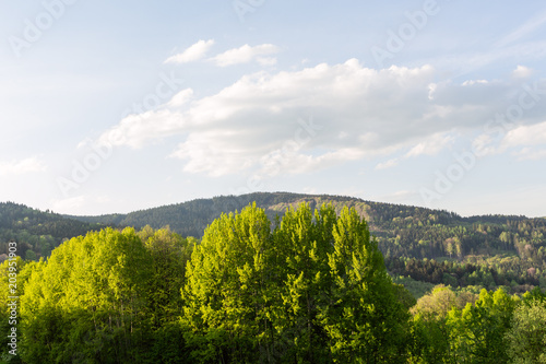 Foto op Canvas Blauwe hemel Spring meadow in mountains. Bright alpine landscape with blue sky. White clouds and bright sun in blue sky.