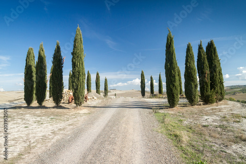 Deurstickers Toscane Tuscan hills with trail, house and cypress in senese clays, Italy