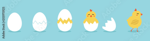 Valokuva  Cute vector cartoon illustration of step-by-step process baby chicken hatching from the egg