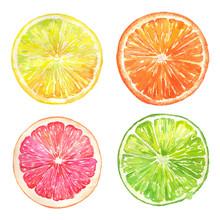 Grapefruit, Orange, Lemon, Lim...