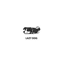 Lazy Dog, Cute Border Collie P...