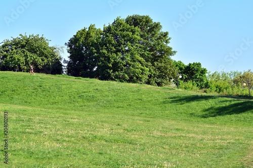 Foto op Canvas Pistache Park
