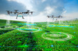 canvas print picture - Agriculture drone scanning area to sprayed fertilizer on green tea fields, Technology smart farm 4.0 concept