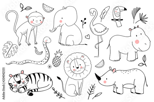 Photo  Safari animals vector set