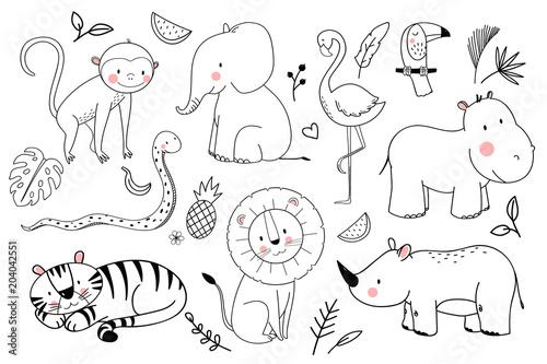 Photo  Safari animals vector set