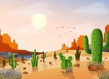 Desert Landscape With Cactus O...