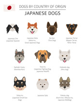 Dogs By Country Of Origin. Jap...