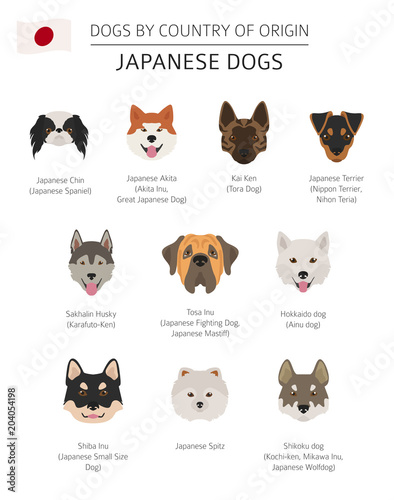 Tablou Canvas Dogs by country of origin