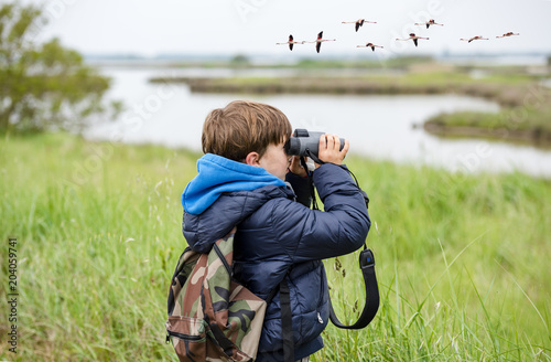 Young kid bird watching