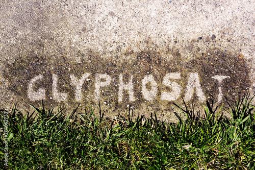 Valokuva  Glyphosat verbotenerweise auf Hofeinfahrt und Pflastersteine gesprüht um Unkraut