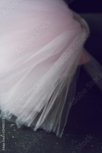 Papiers peints Carnaval pastel pink tutu