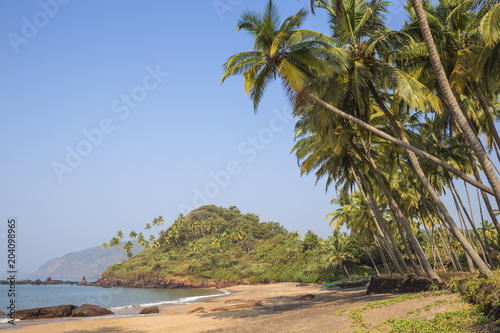 India, Goa, Cola beach