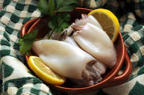 Sepiidae Sepia officinalis Cuttlefish Seppia 갑오징어과 墨斗魚 Poster