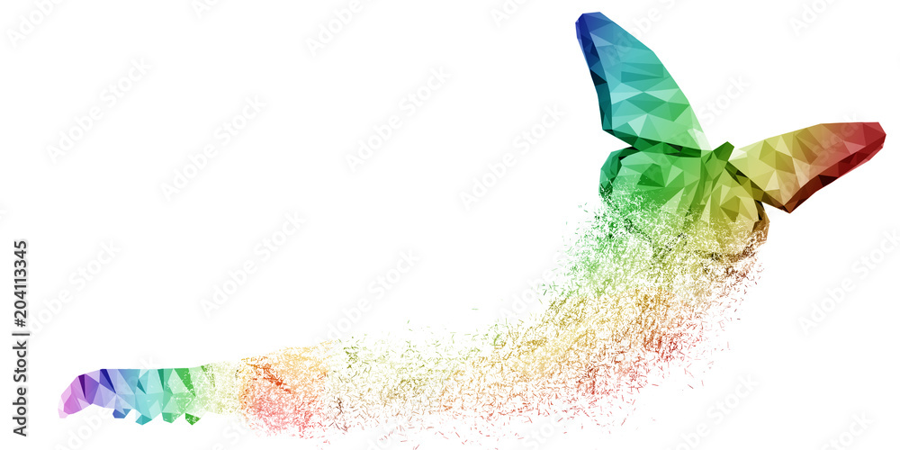 Fototapeta White background of rainbow butterfly transformation liberate human right of LGBT freedom concept. Proud and love to be. Use to celebrate gay pride, coming out of true gender and sexuality equality
