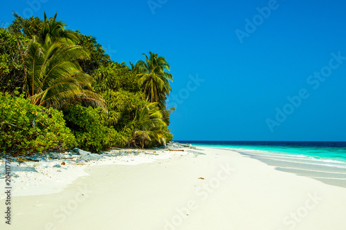 Foto auf Acrylglas Tropical strand The beautiful landscape of the deserted Indian Ocean sandy beach