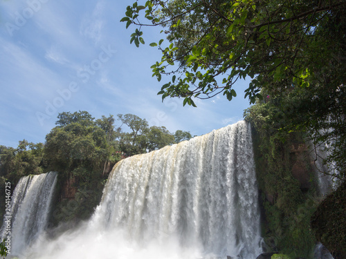 Garden Poster Forest river Iguazu Water Falls at the border of Brasil and Argentina