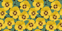 Floral Border. Seamless Pattern With Yellow Pansies And Green Leaves. Summer Background. It Can Be Used For Websites, Packing Of Gifts, Fabrics, Wallpapers. Vector Illustration.