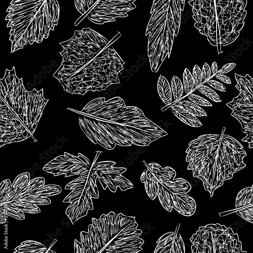 Cotton fabric Pattern of the doodles of trees leaves
