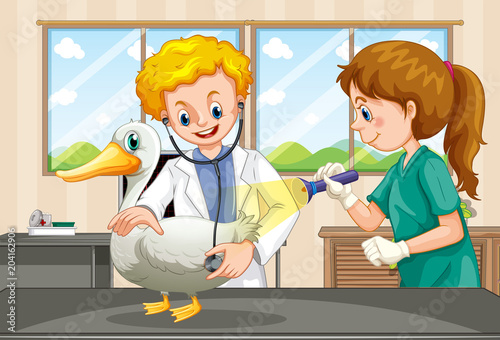 Poster Kids Vets examining health of a duck