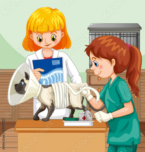 Poster Kids Veterinarian Doctor Helping a Cat