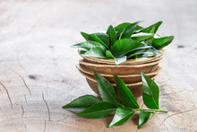 Fresh Curry Leaves In Coconut ...