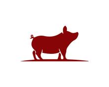 Pig 1.