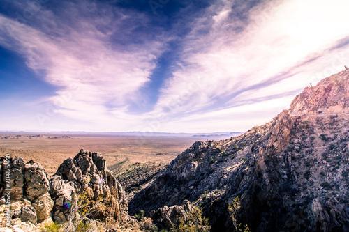 Tuinposter Lichtroze Mojave Desert 1