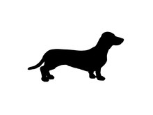 The Silhouette Of A Dachshund....