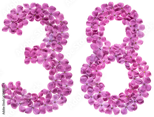 Poster Arabic numeral 38, thirty eight, from flowers of lilac, isolated on white backgr